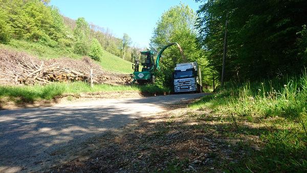 Transports routier de bois