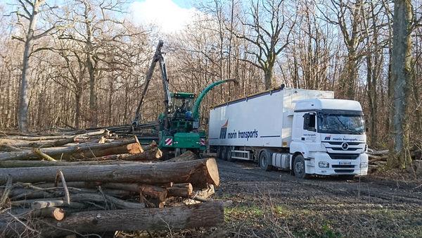 Transports de bois par camions